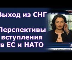 Вбудована мініатюра for Почему не отменен договор о дружбе с РФ до сих пор? Комментирует Климпуш-Цинцадзе